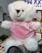 budd_bear_SM