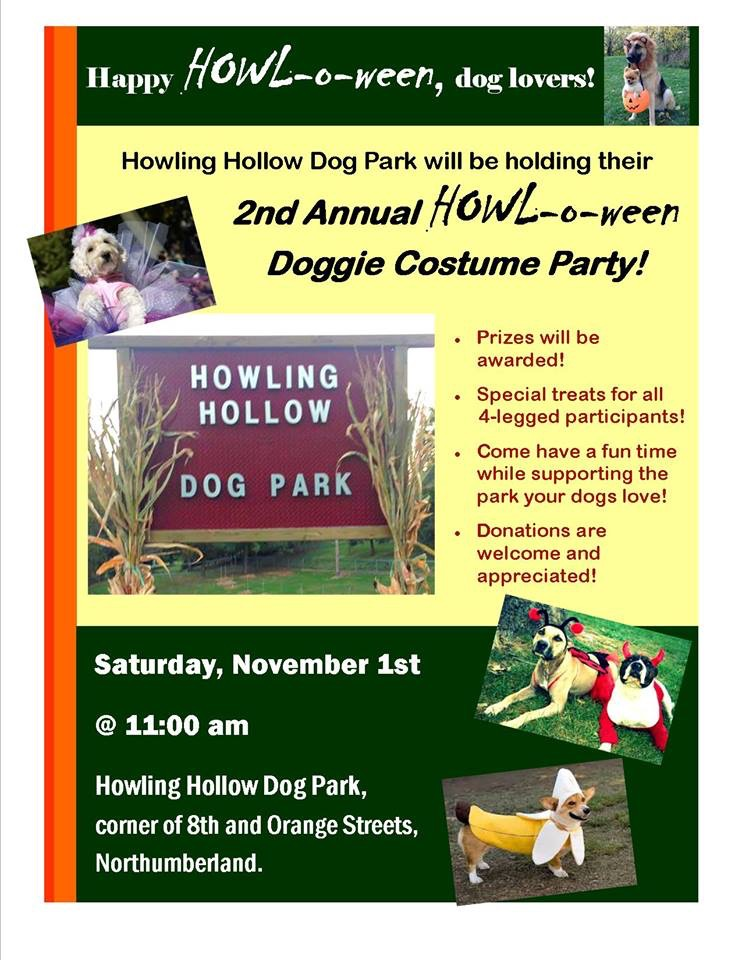 Doggie Costume Party in Northumberland